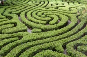 acht aktuelle Anforderungen an CSR-Manager