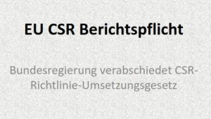 eu-csr-berichtspflicht