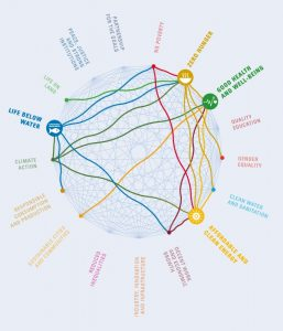 Sustainable Development Goals. A GUIDE TO SDG INTERACTIONS